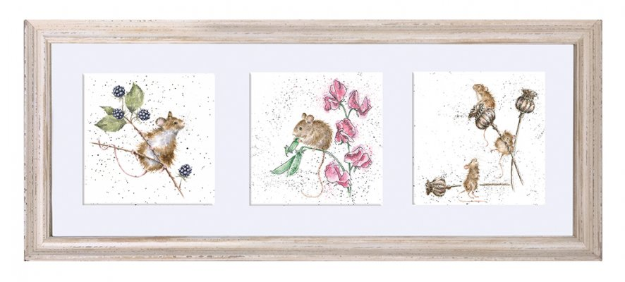 A Trio of Country Mice