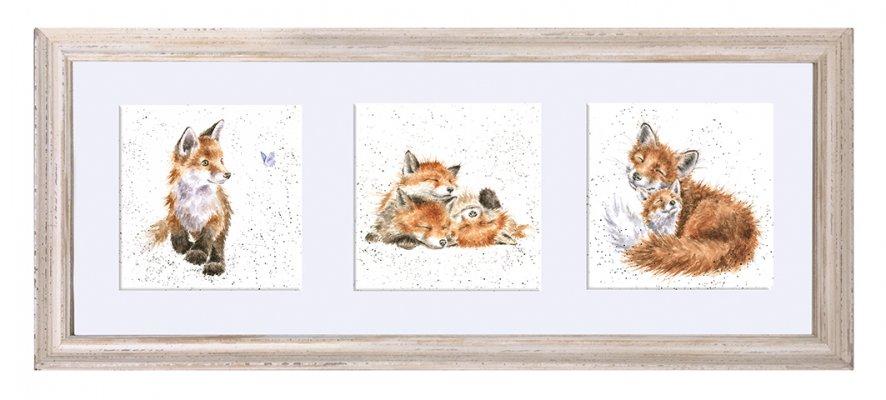 A Trio of Fox Cubs