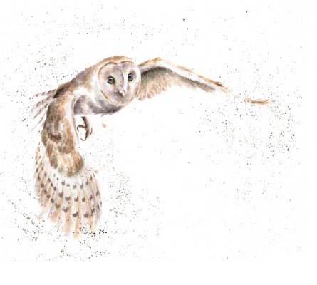 'On the Wing' Limited Print