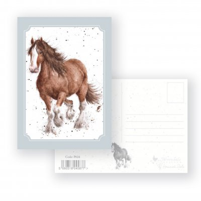P024 'Feathers' Postcard