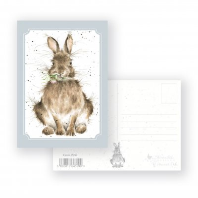 P057 'Daisy' Postcard