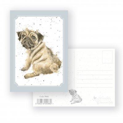 P064 'Pug Love' Postcard
