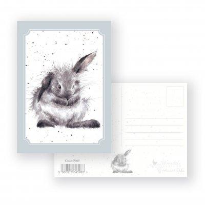 P068 'Bathtime' Postcard
