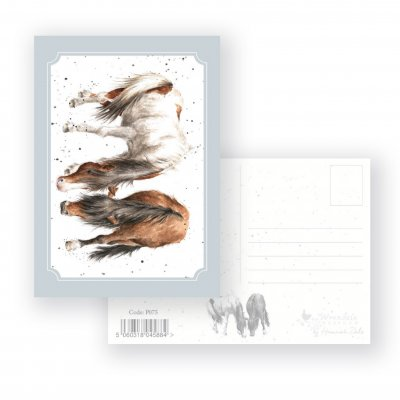 P075 'Stable Mates' Postcard