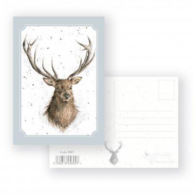 P087 'Portrait of a Stag' Postcard