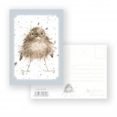 POC001 'Little Wren' Postcard