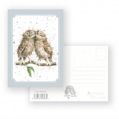 POC018 'Anniversary Owls' Postcard